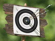 Three arrows on an archery target. Very high resolution illustration of three arrows on an archery target vector illustration