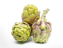 Three  artichoke isolated on white background. Stock Image