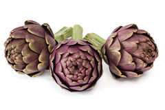 Three artichokes on white background Stock Images