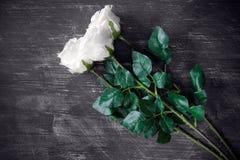 Three artificial white roses Royalty Free Stock Photos