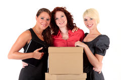 Three attractive businesswomen. Office job. Stock Image