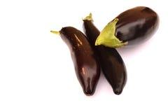 Three aubergine Royalty Free Stock Image