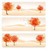 Three autumn abstract banners with colorful leaves and trees. Stock Images