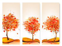 Three autumn abstract banners with colorful leaves. And trees.Vector illustration Stock Photos