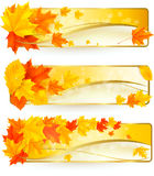 Three autumn banners with colorful leaves in golde Stock Photos