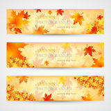 Three autumn banners with colorful leaves. Vector Stock Image