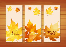 Three autumn banners with maple leaf in triangular style.  Stock Image