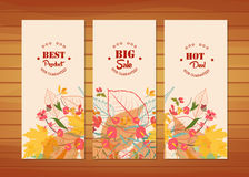 Three autumn banners with stylized autumn leaves Stock Photos