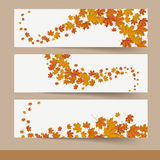 Three Autumn Banners. Template design with three banners on the grey background Stock Images