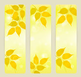 Three autumn banners with yellow leaves Stock Photo