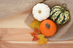 Three autumn gourds with maple leaves Royalty Free Stock Photos