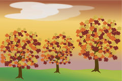 Three autumn trees Stock Images