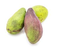 Three avocado Stock Images