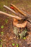 Three axes stuck in a stump close-up. stock image