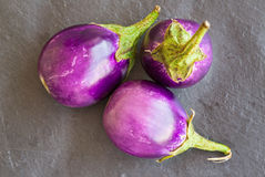 Three Baby size aubergines, eggplants on stone gray background,. Top view Stock Photo
