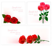 Three backgrounds with beauty roses. Stock Photo