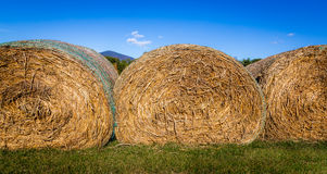 Three Bails of Hay Royalty Free Stock Images