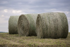 Three Bails of hay. On a summer's day stock photo