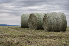 Three Bails of hay. On a summer's day royalty free stock photos