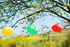 Three balloons as decoration on garden party. Red yellow and green stock photos