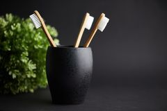 Three bamboo toothbrushes in a black glass with copy space royalty free stock images