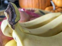 Three bananas in close up Royalty Free Stock Photo