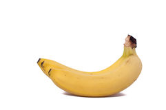 Three bananas isolated on white background. Three natural bananas isolated on white background stock photos