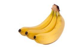 Three bananas isolated on white background. Three natural bananas isolated on white background royalty free stock photos