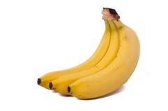 Three bananas isolated on white background. Three natural bananas isolated on white background royalty free stock photography