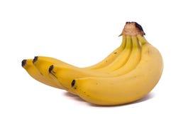Three bananas isolated on white background. Three natural bananas isolated on white background royalty free stock image