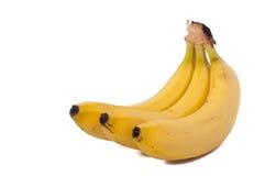 Three bananas isolated on white background. Three natural bananas isolated on white background royalty free stock photo