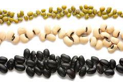 Three bands of different beans Royalty Free Stock Images