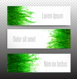 Three banners with fresh green grass on white background. Vector illustration Stock Image