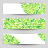 Three banners with green leaves. Royalty Free Stock Photography