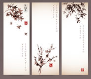 Three banners with maple, bamboo and sakura Stock Photography