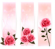 Three banners with pink roses. Royalty Free Stock Images