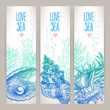 Three banners with shells Stock Photos