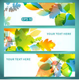 Three Banners of Shiny Colorful Autumn Leaves Royalty Free Stock Image