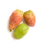 Three barbary figs Stock Photo