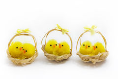 Three baskets of easter chicks over white Stock Photo