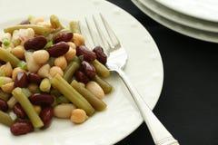 Three Bean Salad. Marinated bean salad on white plate Stock Image