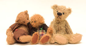 Three Bears. 1 listening Stock Images