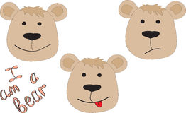 Three bears with a different mood Stock Photos