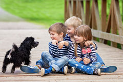 Three beautiful adorable kids, siblings, playing with cute littl Royalty Free Stock Photos