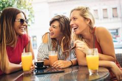 Three beautiful friends in a cafe. Having fun royalty free stock image