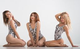 Beautiful girls in bathing suits stand on a gray background Stock Photo