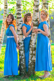 Three beautiful girls in blue dresses in the park Royalty Free Stock Image