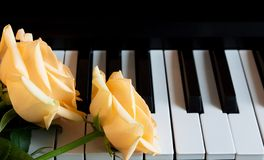 Free Three Beautiful Nude Rose On The Piano. Celebration, Congratulations, Music, Theater. International Women`s Day, Mother`s Day, Stock Photos - 159453813