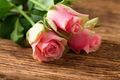Three beautiful pink roses on wooden board Stock Photography