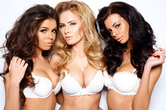 Three beautiful sexy curvaceous young women Royalty Free Stock Images